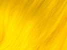 swatch of new look yellow wig color