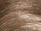 swatch of wig color 14 honey blonde