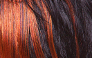 swatch of wig color f1b46