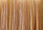 wig swatch in apricot blonde